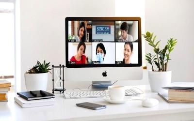 SINGEM Online 2.0